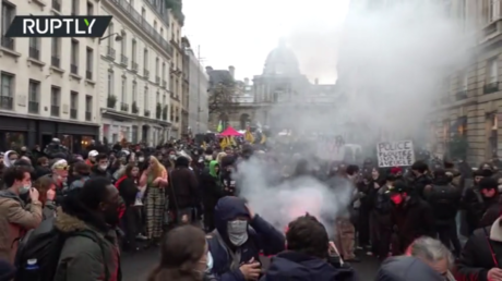 'My camera against your baton': Protesters rally in Paris as Senate debates controversial bill aimed at protecting police (VIDEO)