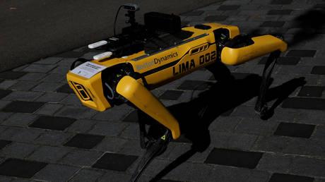 French military tests the robotic dog Spot in combat drill, Boston Dynamics tells media it had no idea