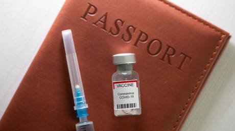 Support for vax passport grows, some say unvaxxed should not receive priority medical care