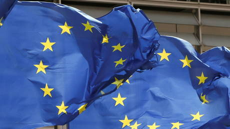 EU Parliament votes to sue European Commission as MEPs overwhelming call for Brussels to take action on rule of law